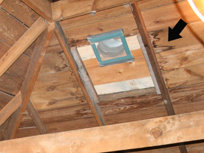Attic Sheeting Water Damage