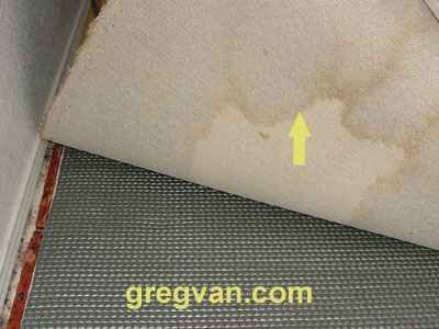 Water Stains Under Carpeting