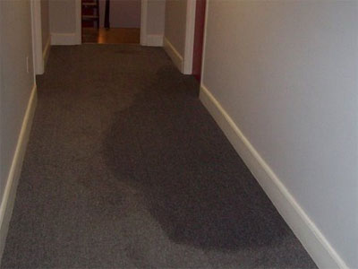 Wet Carpeting In Hallway
