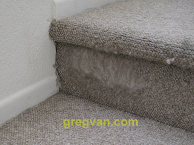 Home Repair Solution You Could Provide Your Cat With A Scratching Post Once These Carpeted Posts Are Destroyed Can Simply Purchase Another One And