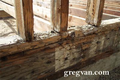 Home Termite Repairs