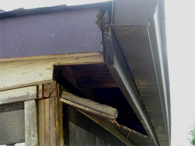 Corner Roof Fascia Damage