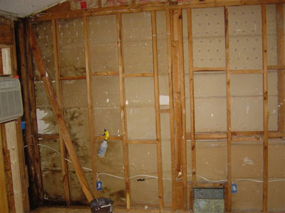 mold-behind-bathroom-wall.jpg