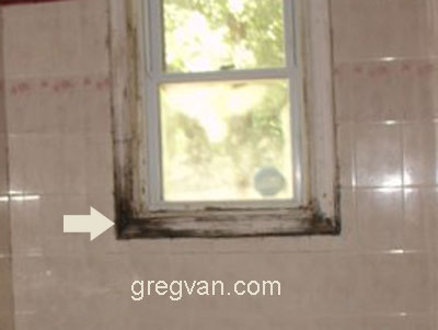 Mold Damaged Bath Wood Window